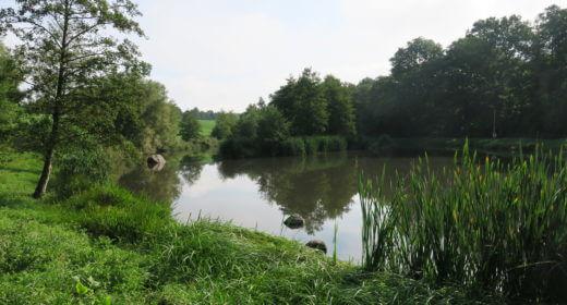 Damm Stenbrogården 2