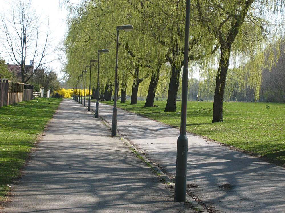 Trädallé i Remonthagen, Malmö stad